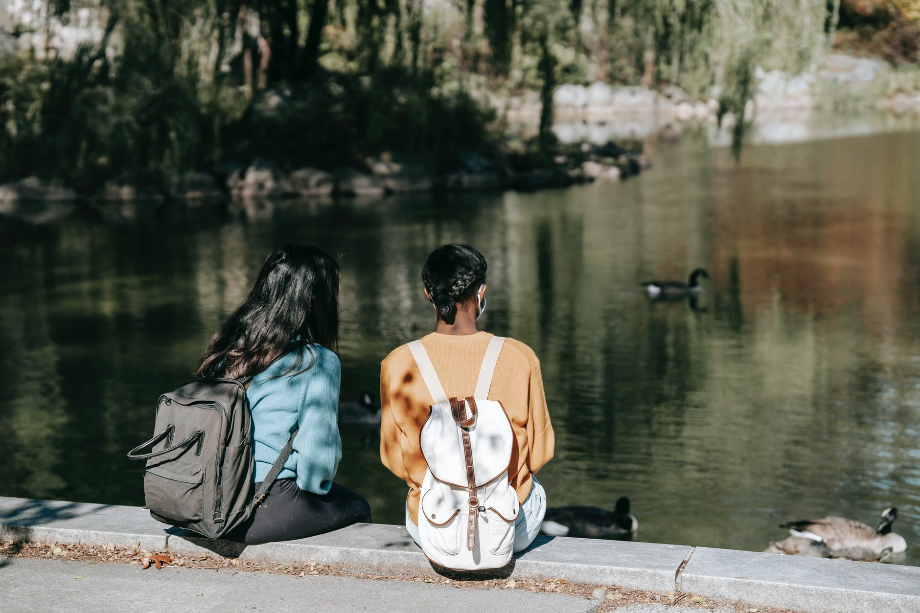 young women having rest near calm lake with ducks
