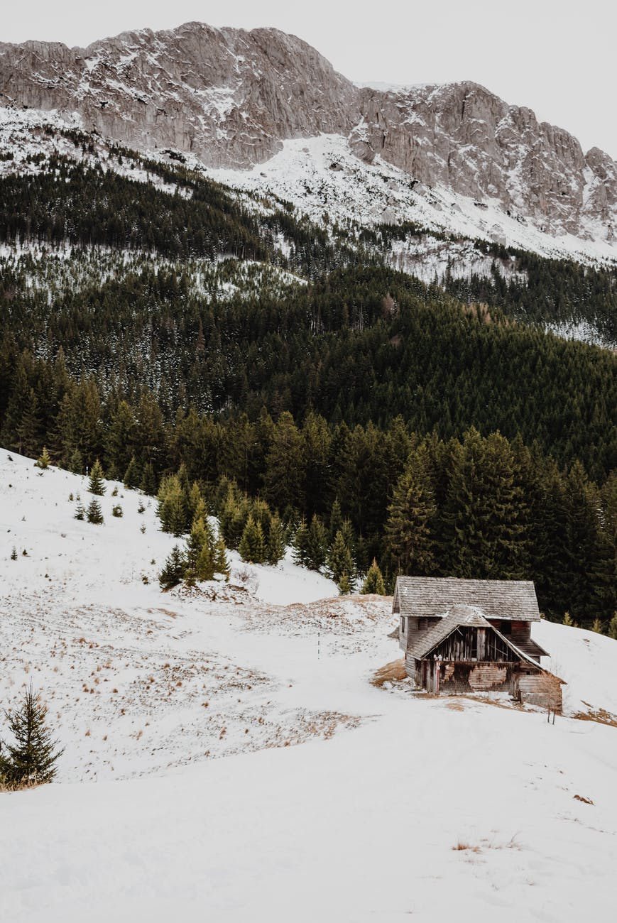 brown wooden house on snow covered ground near green pine trees and mountain