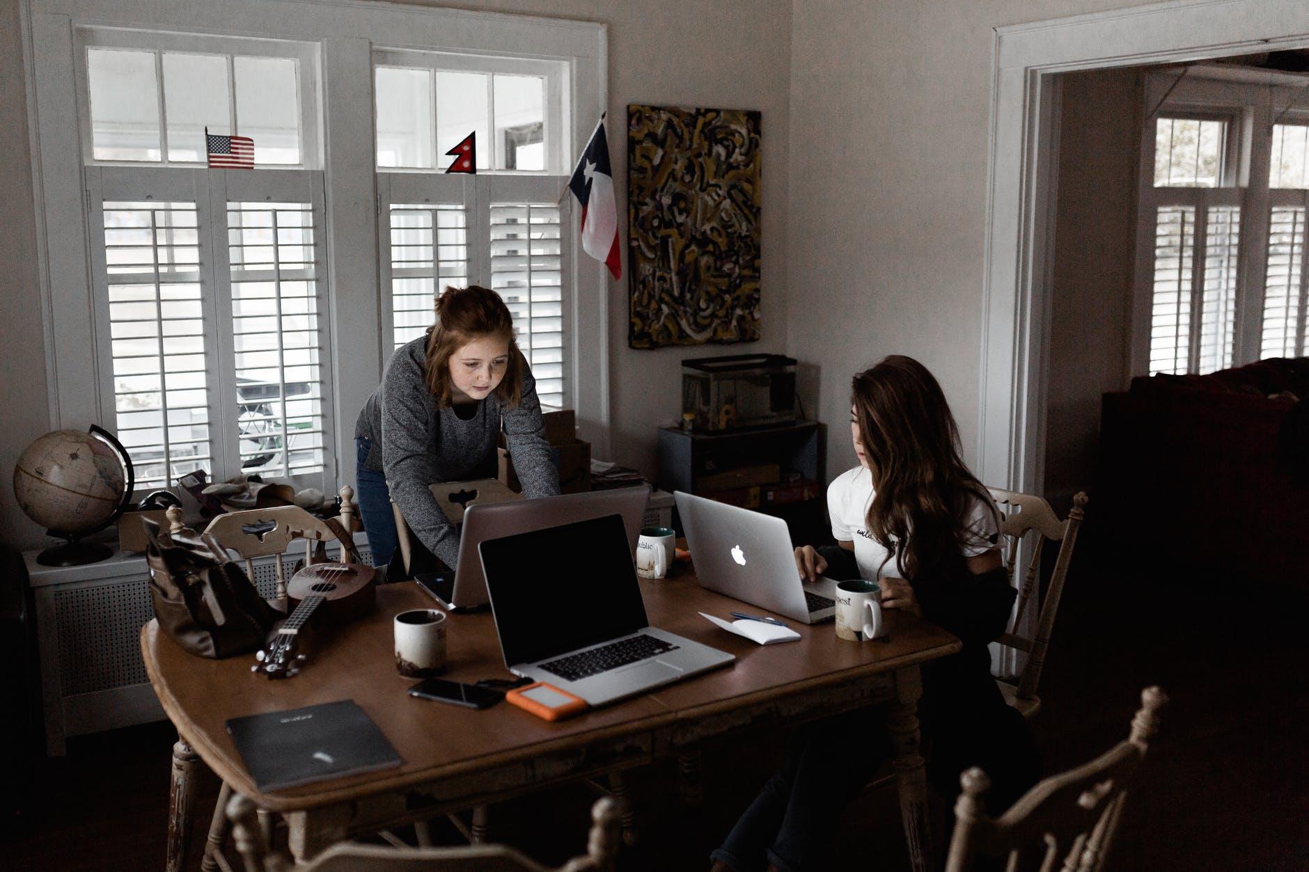 photo of women using laptops