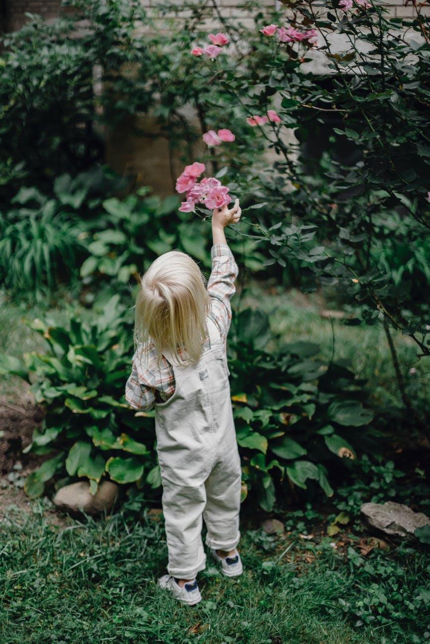 unrecognizable toddler picking flowers in green garden