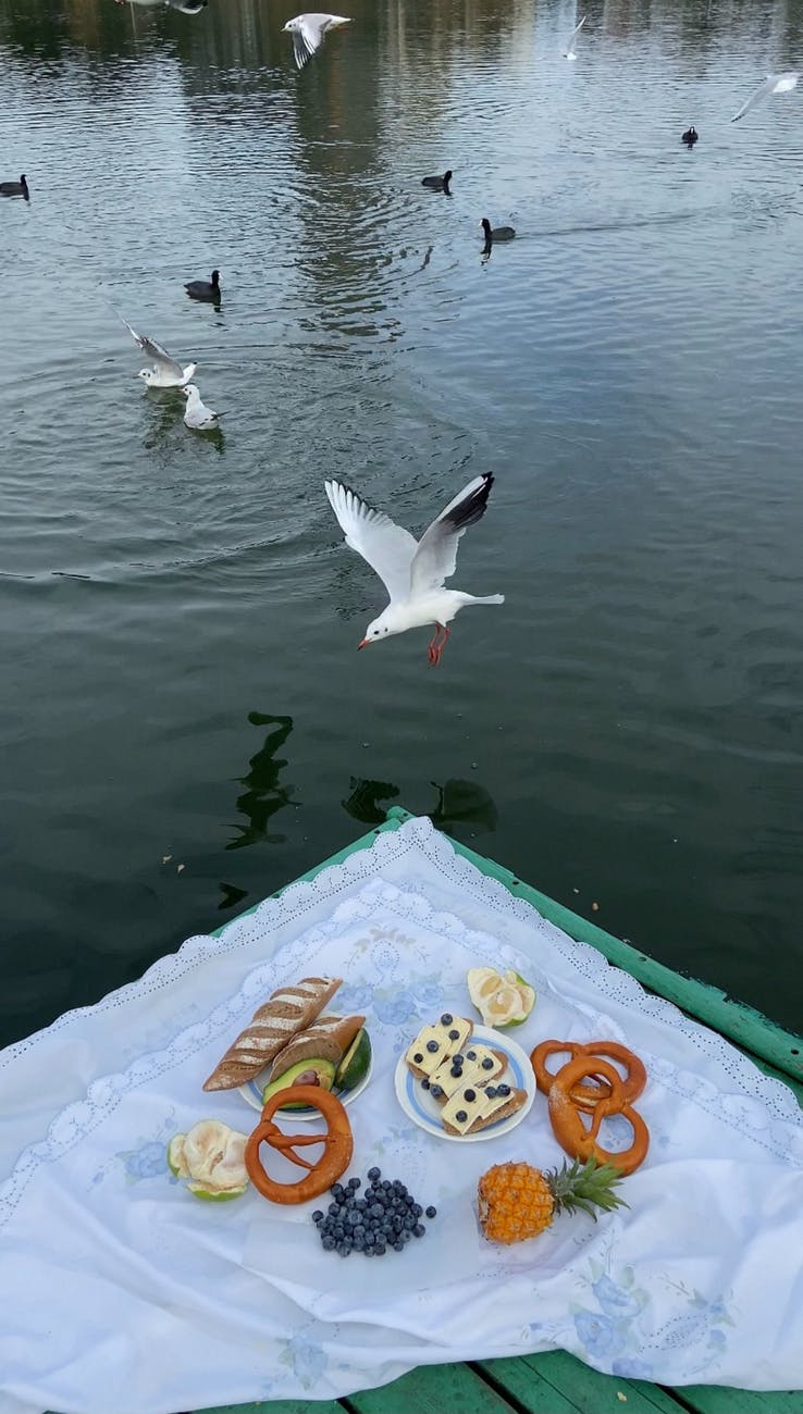 picnic blanket with food on pier